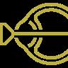 Laser retinico